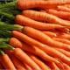 Carottes oranges ( la botte)